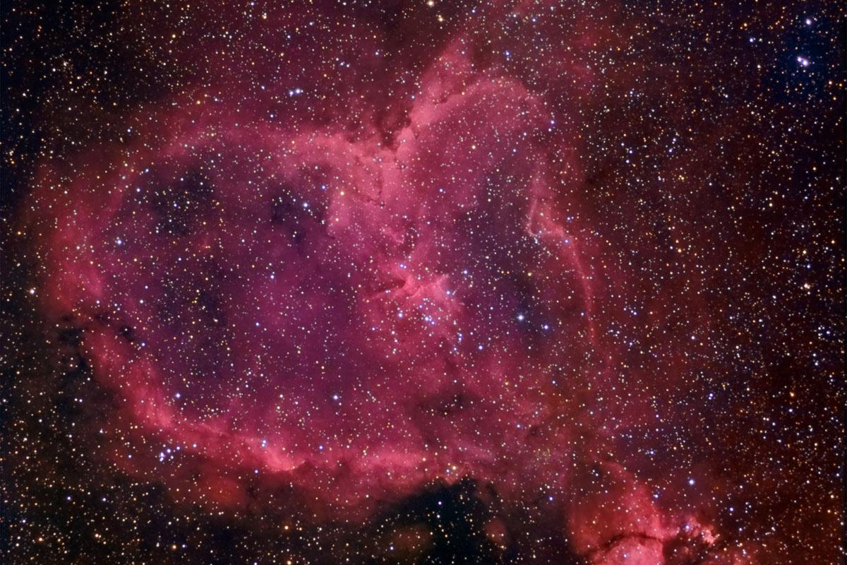 Walentynki po naukowemu