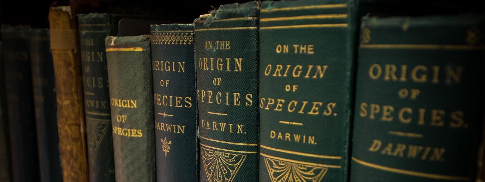 Czy ewolucja przeczy wierze?