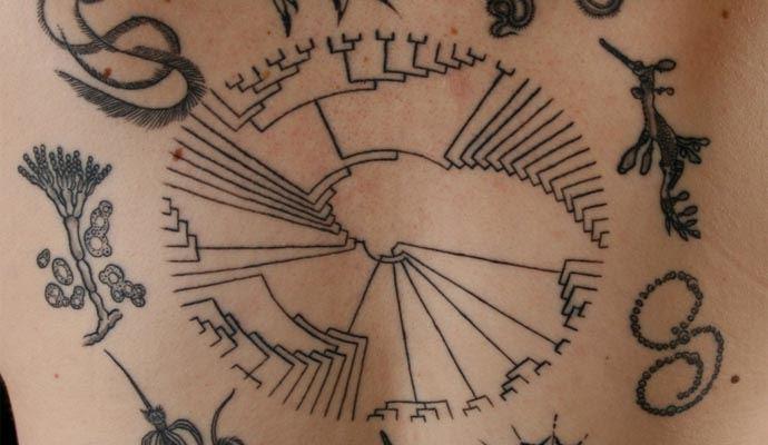 Co powiecie nataki tatuaż? Wten sposób ozdobiła swoje ciało drClare d'Alberto zMelbourne.