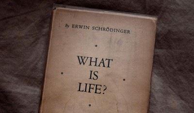 Schrödingera romans zbiologią
