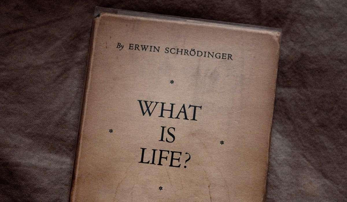 Schrödingera romans z biologią