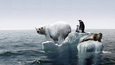 Argument za globalnym ociepleniem? Pobawmy się wykresami