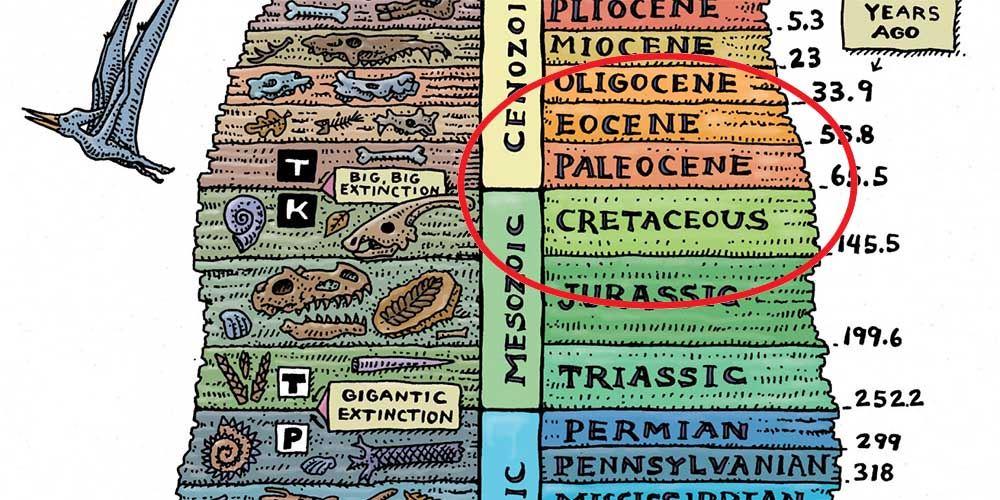 Granica K-Pg, odkredy ipaleogenu