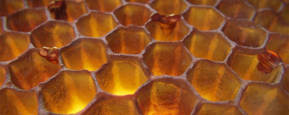 Sześciokątny kształt plastra miodu