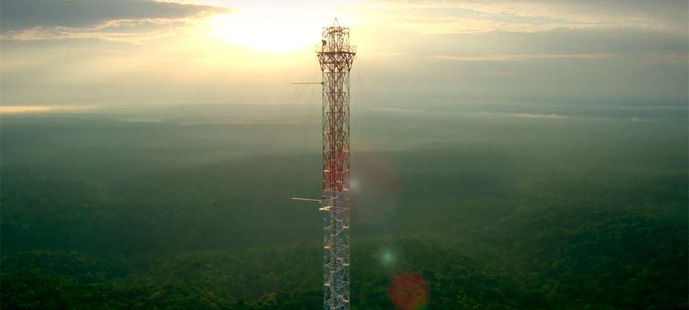 Wieża wAmazonii