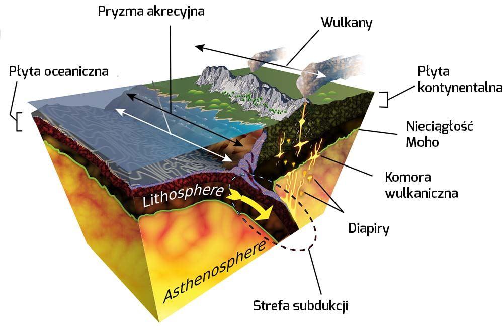 Płyta kontynentalna ioceaniczna