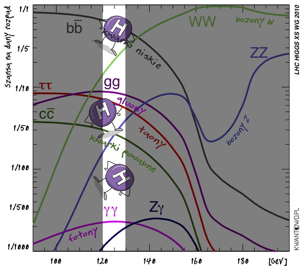 Możliwości rozpadu bozonu Higgsa