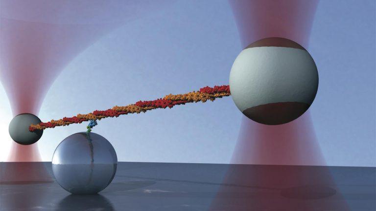 Nobel za optyczną pęsetę – krótko i niezbyt przejrzyście