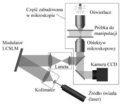 Schemat działania pęsety optycznej