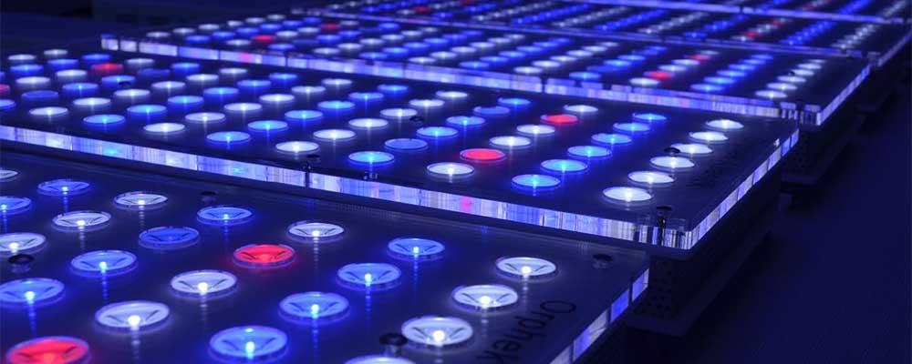 Kolorowe diody LED