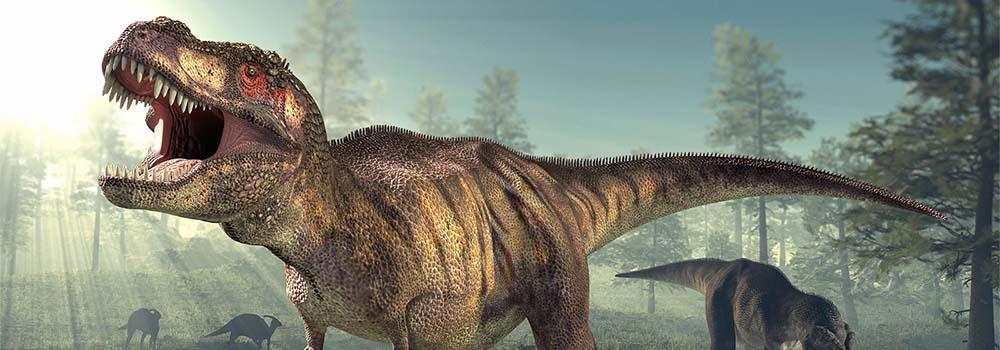 Rekordowo duży Tyranozaur