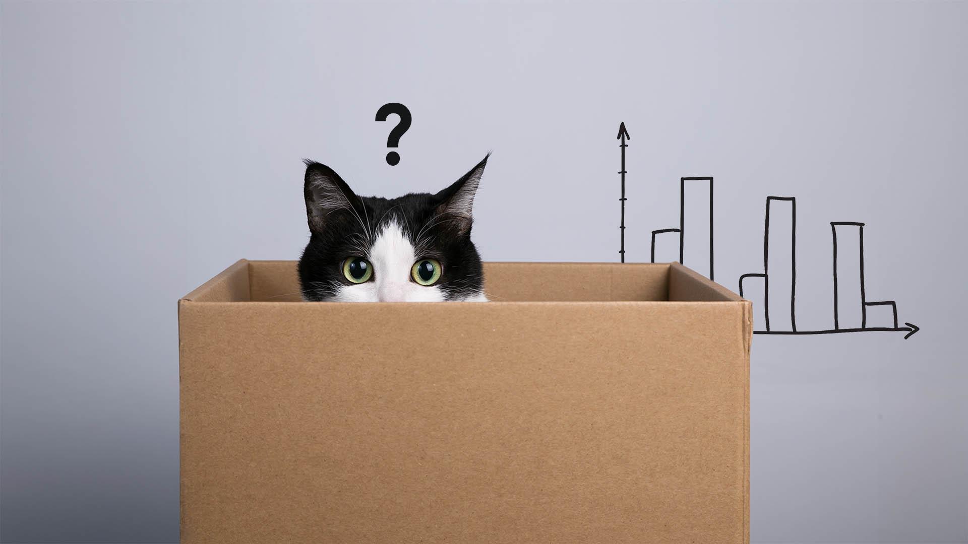 kot interpretacja statystyczna