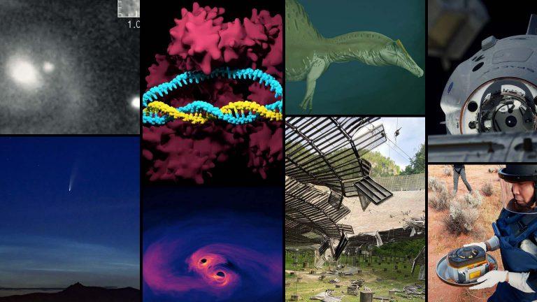 Kometa, Smok i pływający dinozaur – naukowe podsumowanie 2020