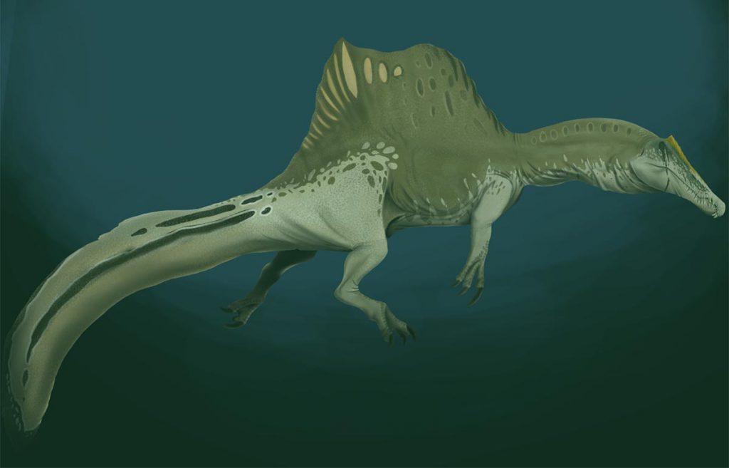 Wodny spinozaur