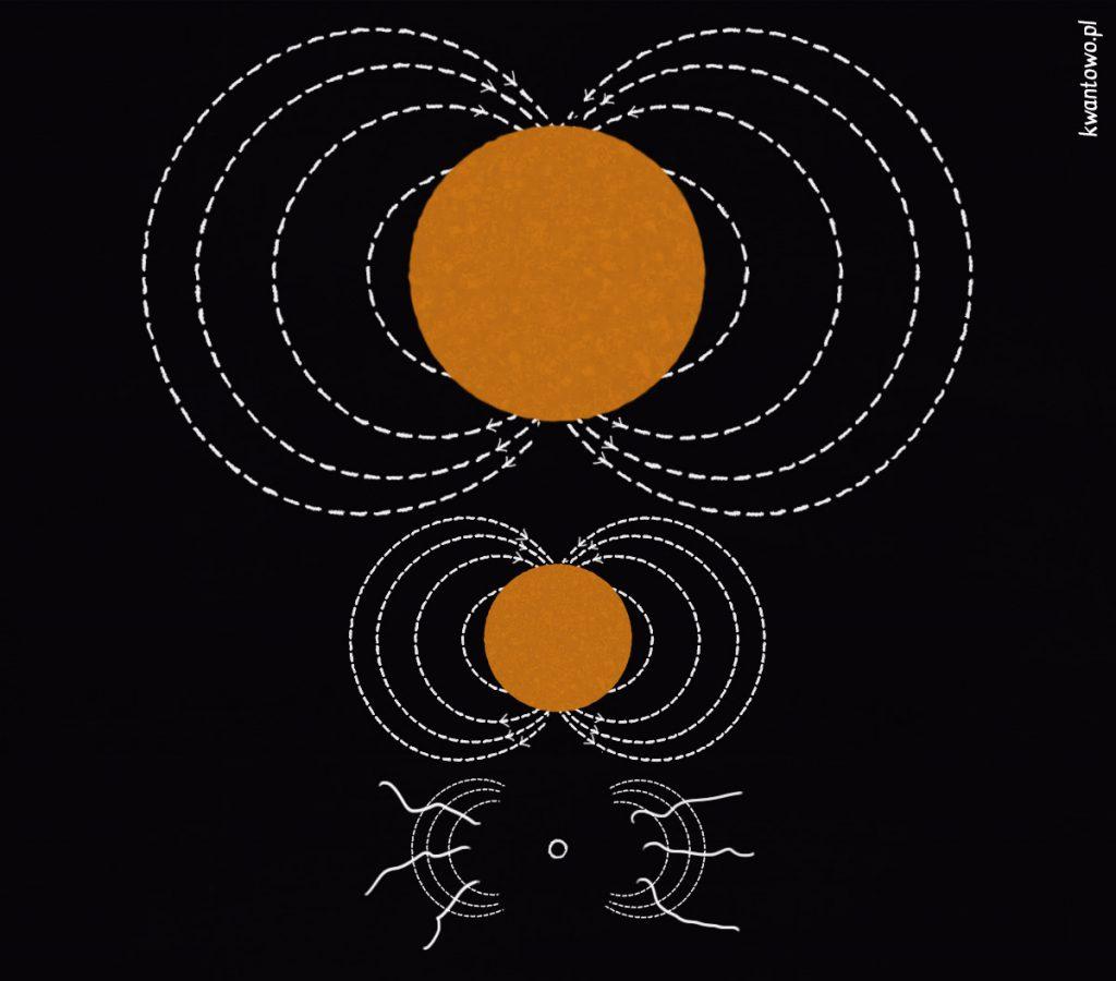 Pole magnetyczne czarnej dziury