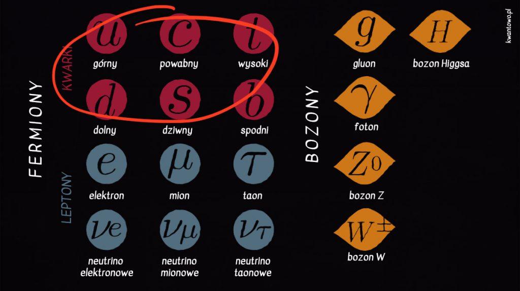 Kwarki w modelu standardowym
