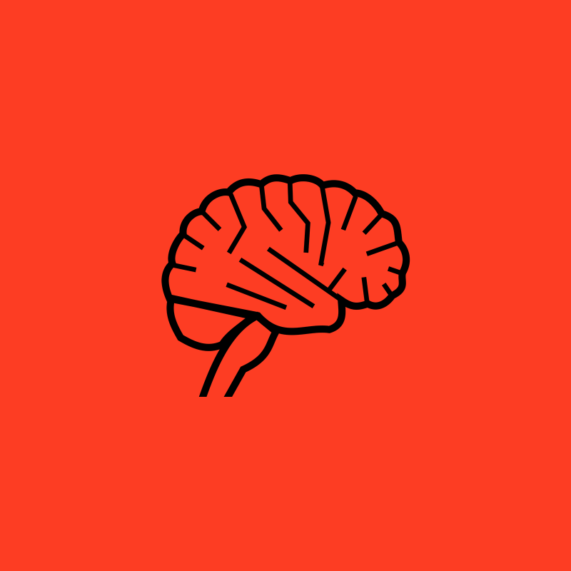 Wiadomości naukowe, mózg