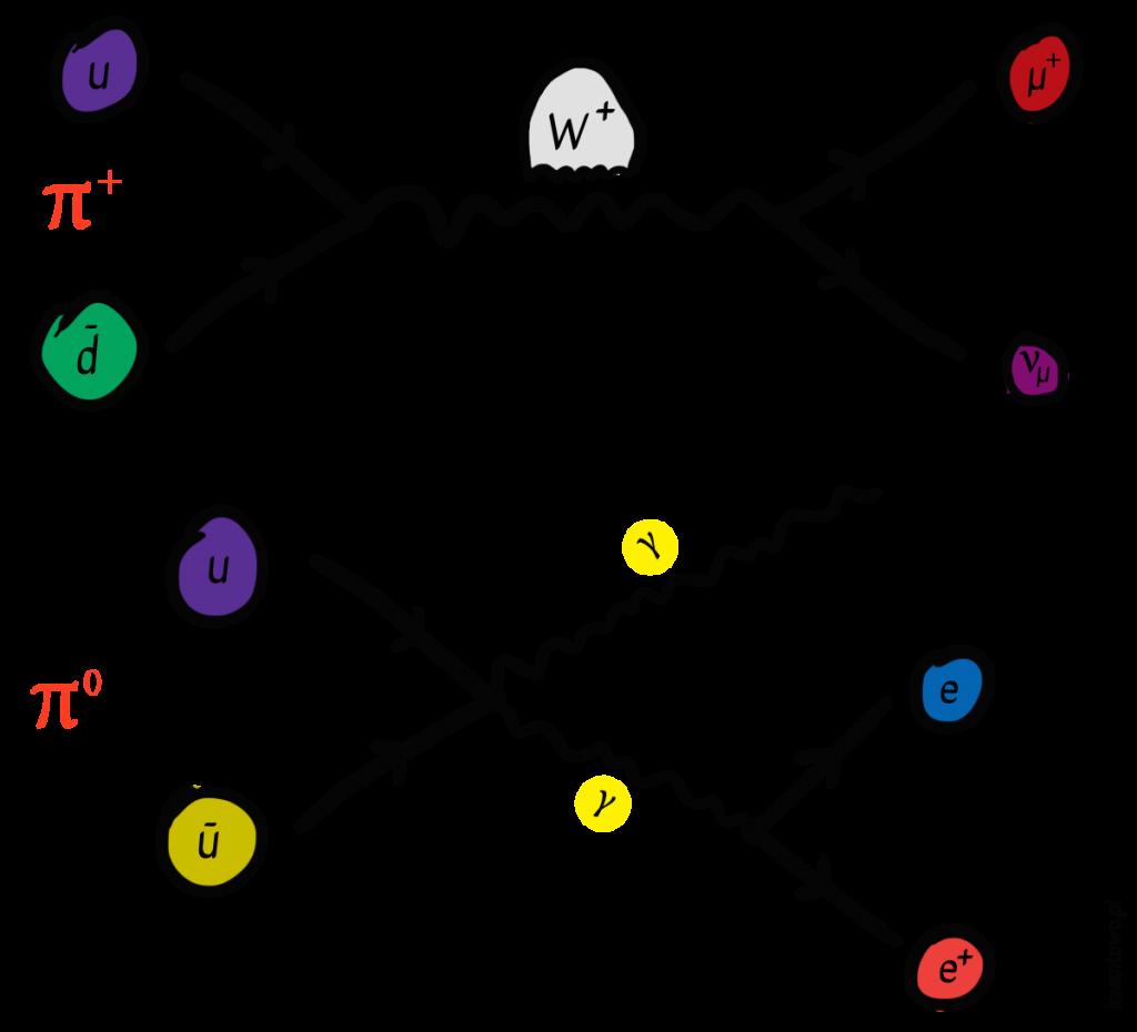 Rozpady mezonów pi oraz anihilacja kwarków